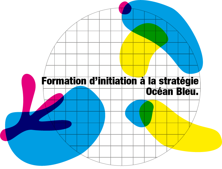 fomation innovation et atelier d'initiation à la stratégie Océan Bleu